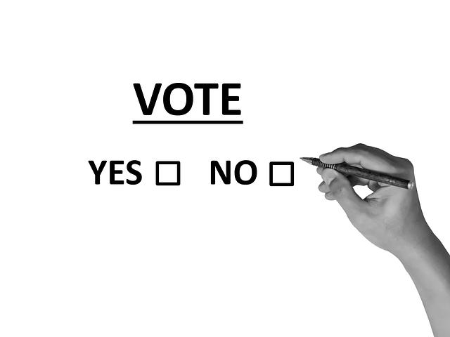 海外赴任した駐妻も選挙に参加できます。在外選挙で投票できるようにしよう!